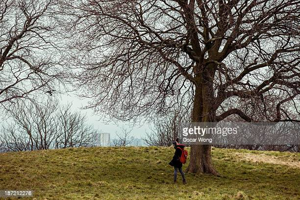 A young girl is taking photo under a tree