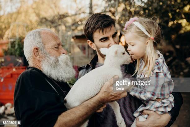 Young girl kissing lamb