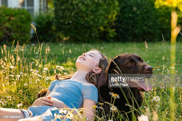 young girl leaning on her pet dog - pure bred dog stock pictures, royalty-free photos & images