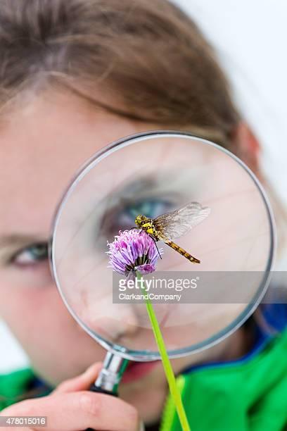 Junge Mädchen auf der Suche in einer Libelle durch ein Vergrößerungsglas