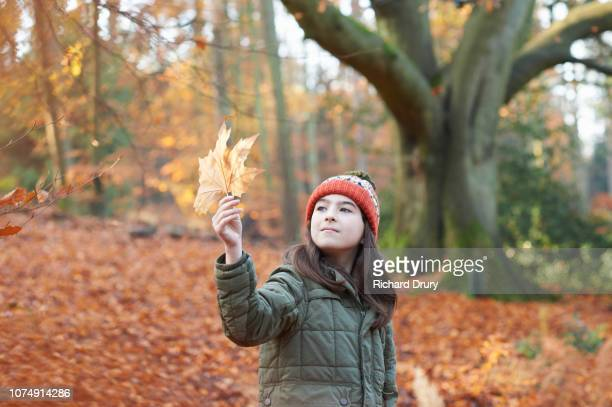 Young girl looking at a leaf in Autumnal woodland