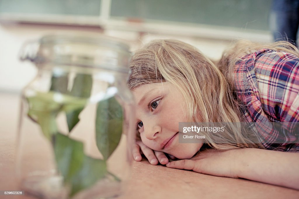 Young girl (8-9) looking at plant sample in jar : Stock-Foto