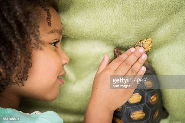 A young girl looking closely at a tortoise.