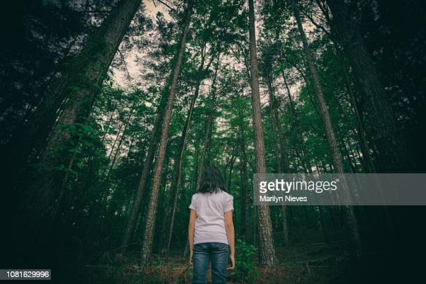 young girl looking towards a deep forest - lost stock pictures, royalty-free photos & images