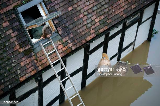Young girl looks out the window of her marooned home in Ironbridge as her cuddly toys hang out to dry, after the River Severn burst it's banks on...