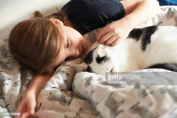 young girl lying on her bed with her pet cat - cat family stock pictures, royalty-free photos & images