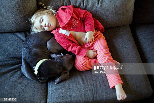 Young girl napping with weimaraner
