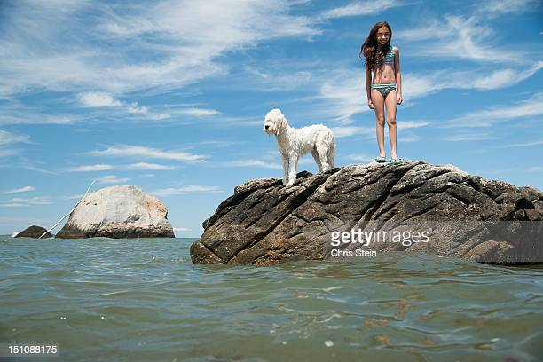 young girl on a rock with a dog - indian bikini stock pictures, royalty-free photos & images