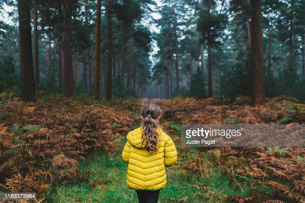 young girl on forest path - childhood stock pictures, royalty-free photos & images