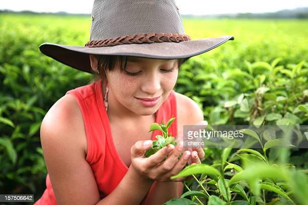 young girl on tea farm