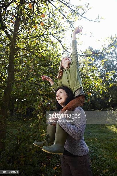 young girl on the shoulders of mother - reaching stock pictures, royalty-free photos & images