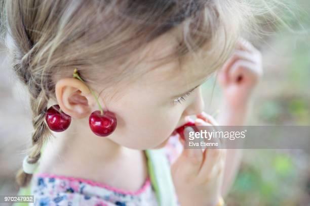 young girl outdoors eating freshly picked cherries - kirsche stock-fotos und bilder