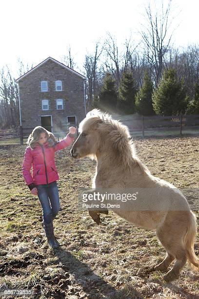 """young girl outside, playing with pony"" - pony play bildbanksfoton och bilder"