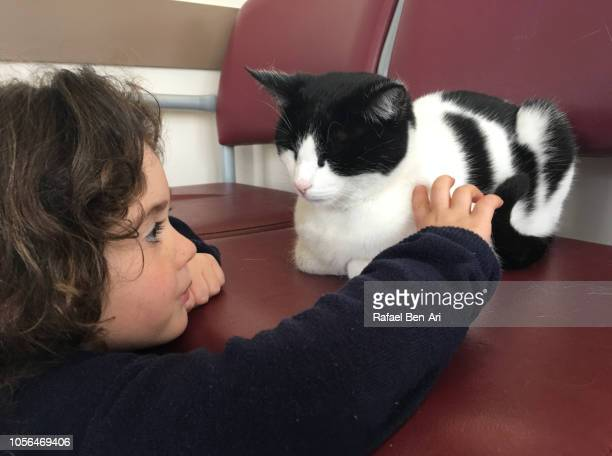 Young Girl Petting a Cat
