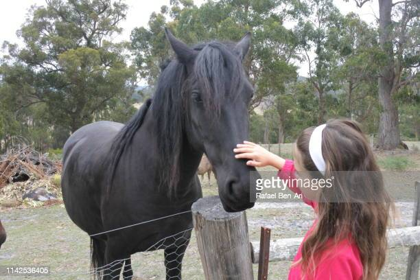 Young girl petting a hourse in a ranch