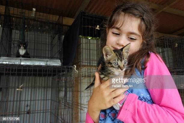 young girl petting a kitten in an animal shelter - rafael ben ari bildbanksfoton och bilder