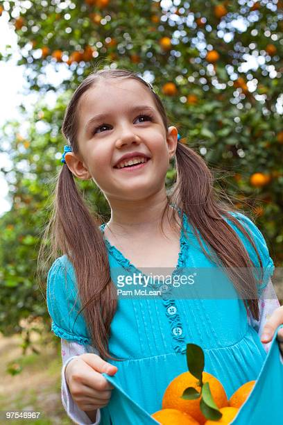 young girl picking oranges - orange orchard stock photos and pictures