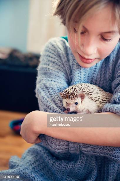 """young girl playing with hedgehog pet in her bedroom. - """"martine doucet"""" or martinedoucet imagens e fotografias de stock"""