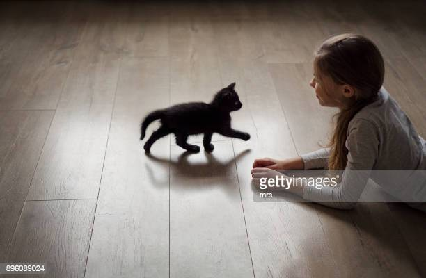 Young girl playing with kitten