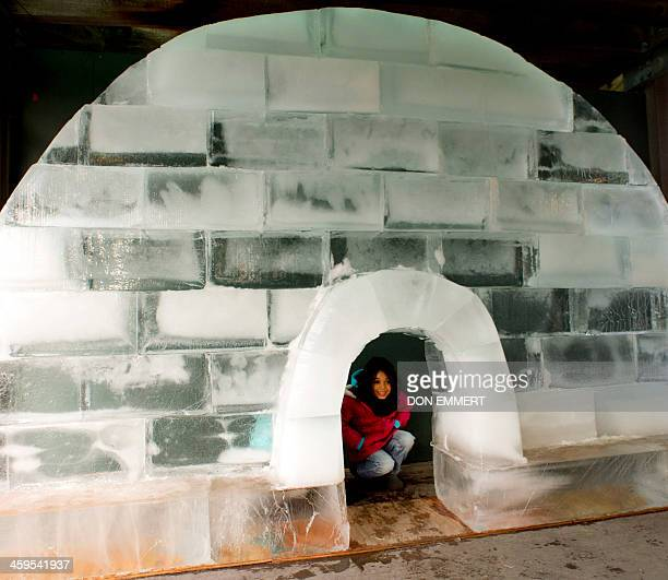 A young girl plays in an igloo made out of a blocks of ice during the Wildlife Conservation Society's Bronx Zoo 'Salute to Wildlife Ice Carving Week'...
