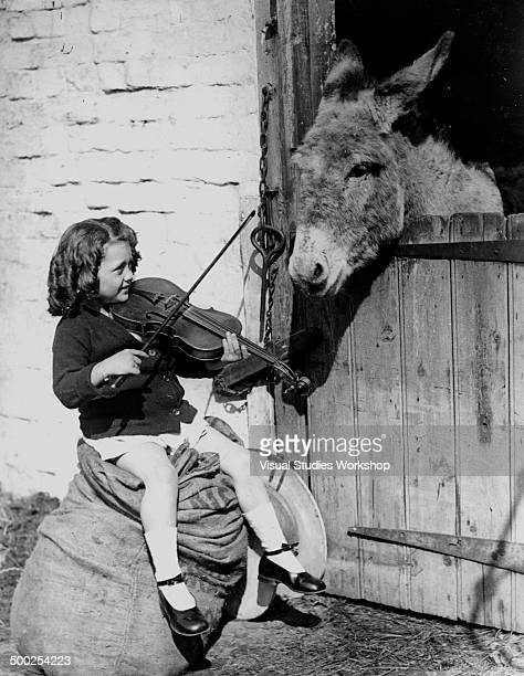 A young girl plays the violin for an interested donkey early to mid 20th century