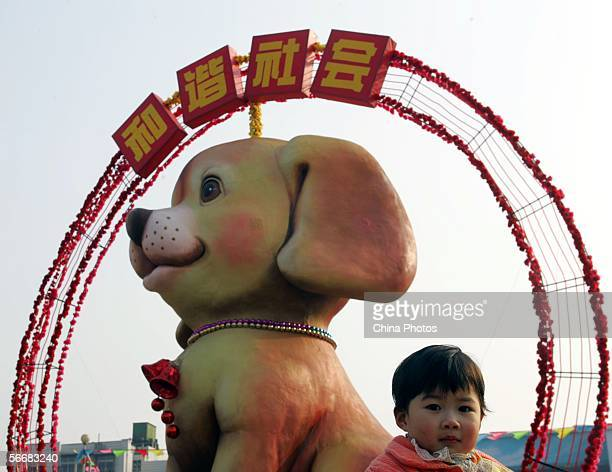 A young girl poses for pictures in front of a giant doll dog set up to mark the upcoming Chinese New ear on January 26 in Wuhan Hubei province China...