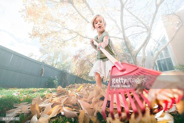 young girl (6-7) raking leaves in autumn - robb reece stock pictures, royalty-free photos & images
