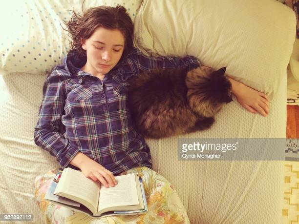 young girl reading a book with a cat in bed - hairy girl stock pictures, royalty-free photos & images