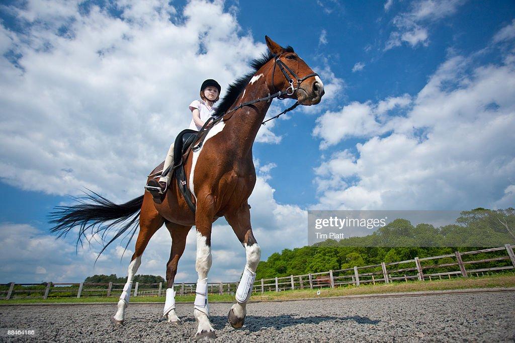 Young girl riding a horse. : Foto de stock