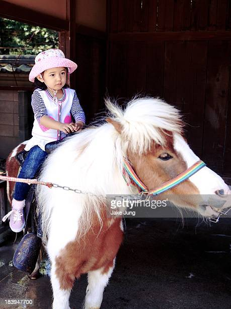 Young girl riding a pony