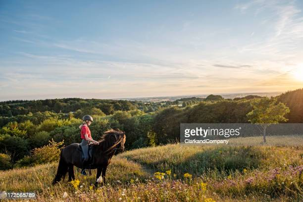 young girl riding an icelandic horse. - riding stock pictures, royalty-free photos & images