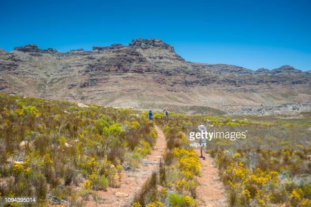young girl running on a jeep track in the mountains towards mother and brother - wilderness area stock pictures, royalty-free photos & images