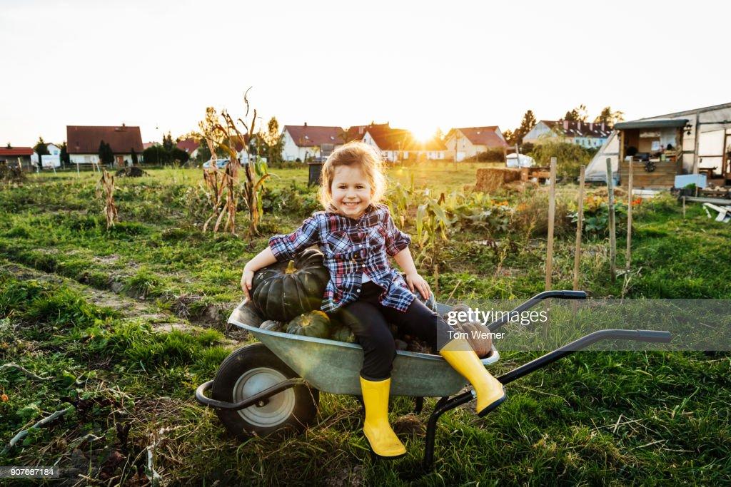 Young Girl Sitting On Wheelbarrow Full Of Pumpkins : Stock Photo