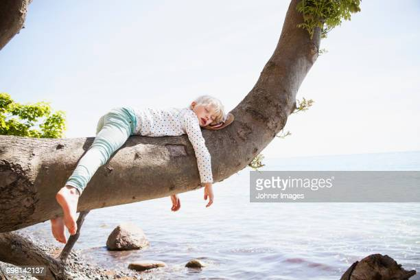 young girl sleeping on branch by sea - dormir humour photos et images de collection