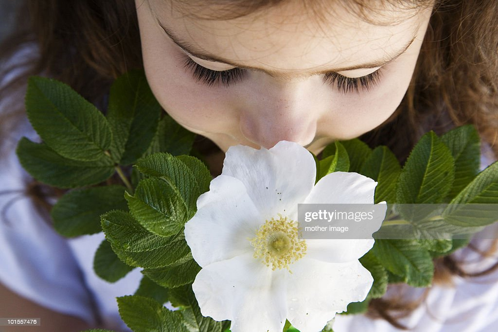 Young girl smelling an island rose : Stock Photo
