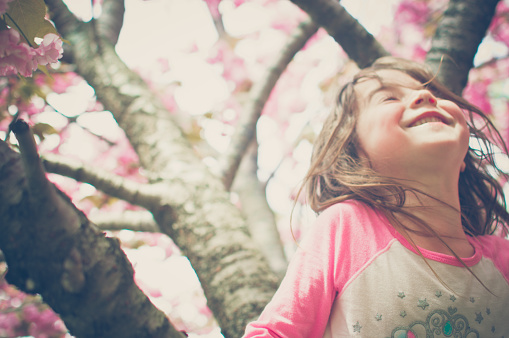 A young girl smiles in a cherry blossom tree. - gettyimageskorea