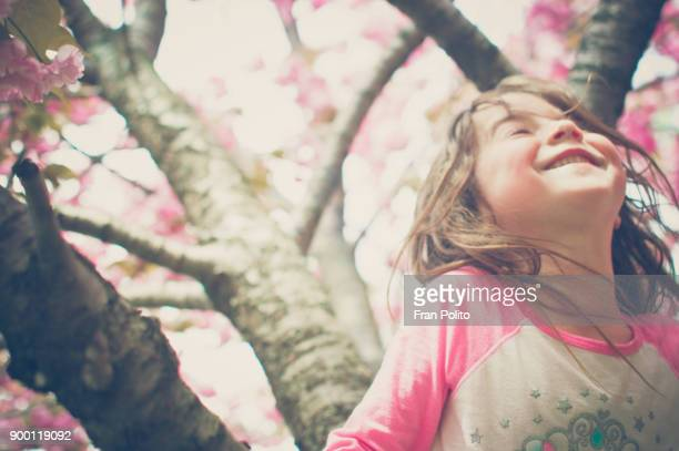 A young girl smiles in a cherry blossom tree.