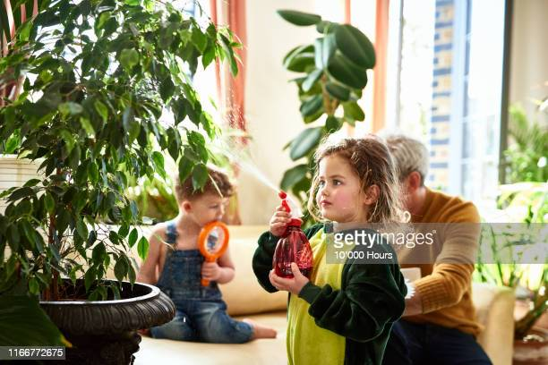 young girl spraying plant with water at home - costume stock pictures, royalty-free photos & images