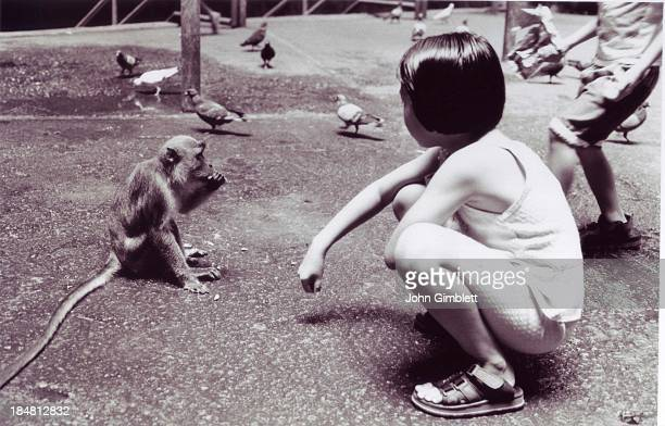 CONTENT] A young girl squats looking at a monkey in the street their poses are similar