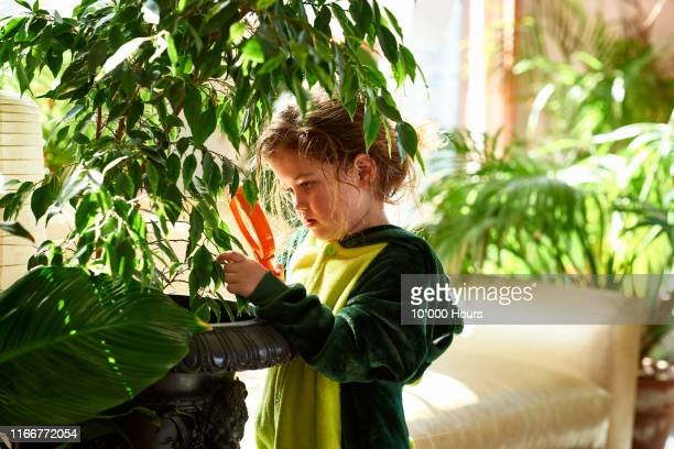 young girl staring at plant through magnifying glass - searching stock pictures, royalty-free photos & images