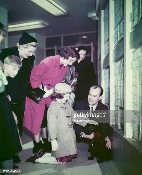 A young girl strokes a puppy dog as her mother and family look on at the pet shop in Harrods department store in Knightsbridge London in February 1956
