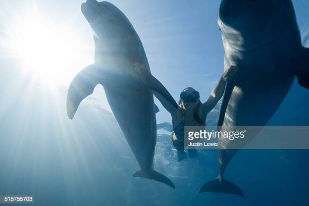 Young Girl Swims Between 2 Dolphins