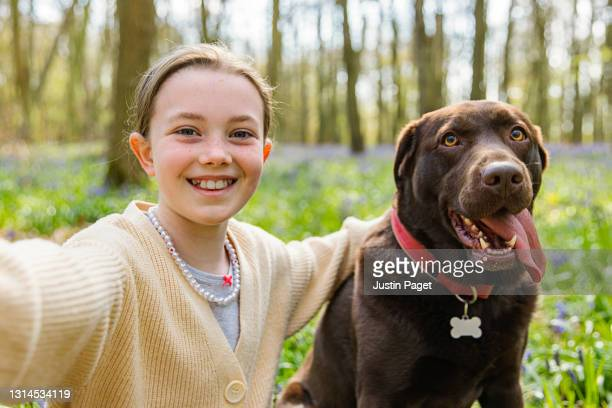a young girl takes a selfie her with chocolate labrador dog - digital native stock pictures, royalty-free photos & images