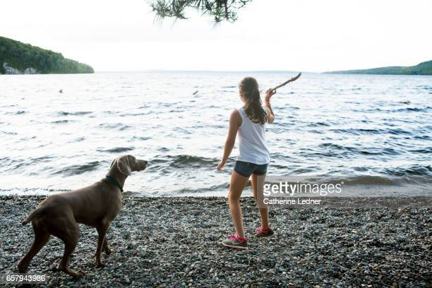 Young girl throwing a stick for her dog