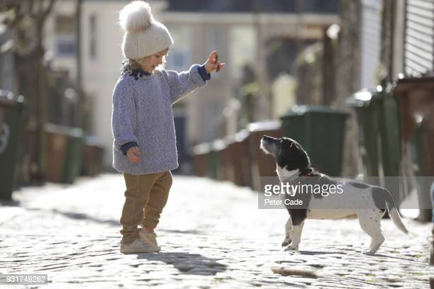 young girl training dog outside - waiting stock pictures, royalty-free photos & images