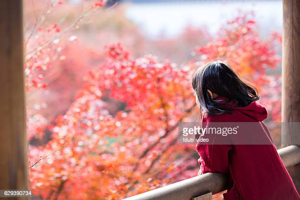 Young girl viewing autumn leaves in Japan
