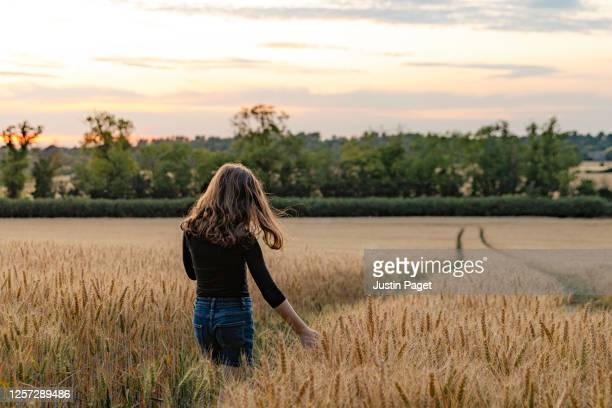 young girl walking on path through field - agricultural field stock pictures, royalty-free photos & images