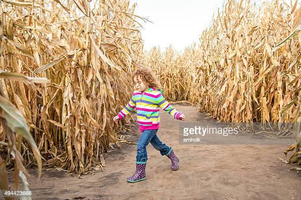Young Girl Walking Through Autumn Corn Maze