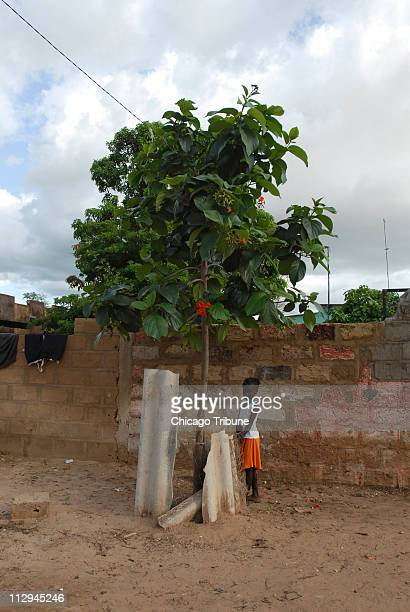 A young girl watches the celebration marking the 10 year anniversary ending female genital cutting in the village of Malicounda Bambara Senegal on...