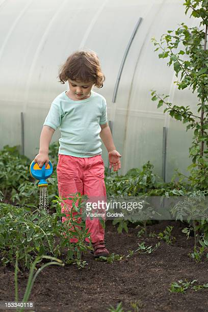 A young girl watering plants in a greenhouse